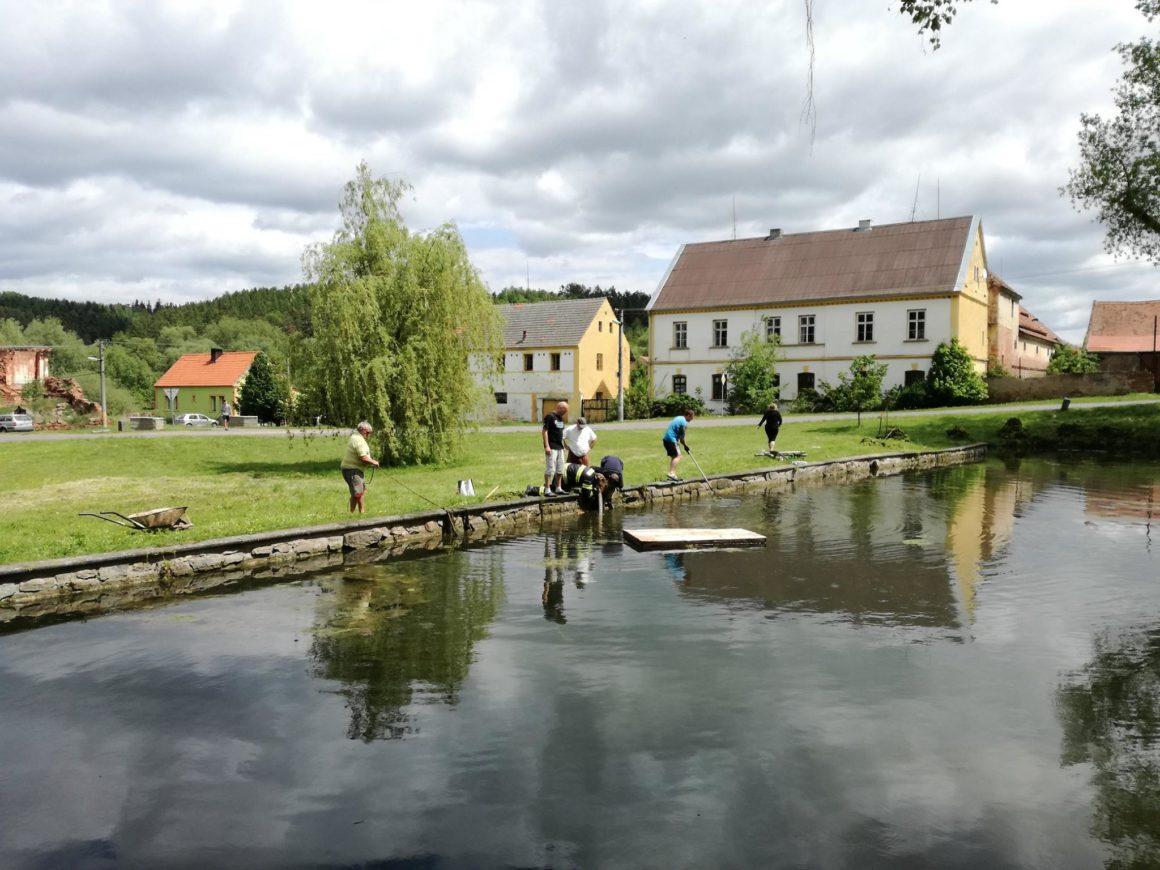 Úprava vody a odplevelení rybníka
